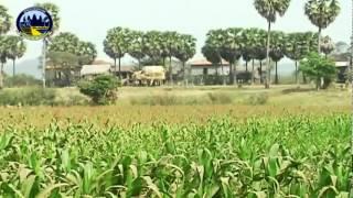 Камбоджа - страна чудес.(Камбоджа для русских! Форум и социальная сеть для туристов и экспатов. http://cambofriends.com Группа на Фейсбуке:..., 2012-05-26T17:20:00.000Z)