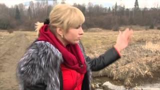 Сколько можно заработать с Амвей Украина