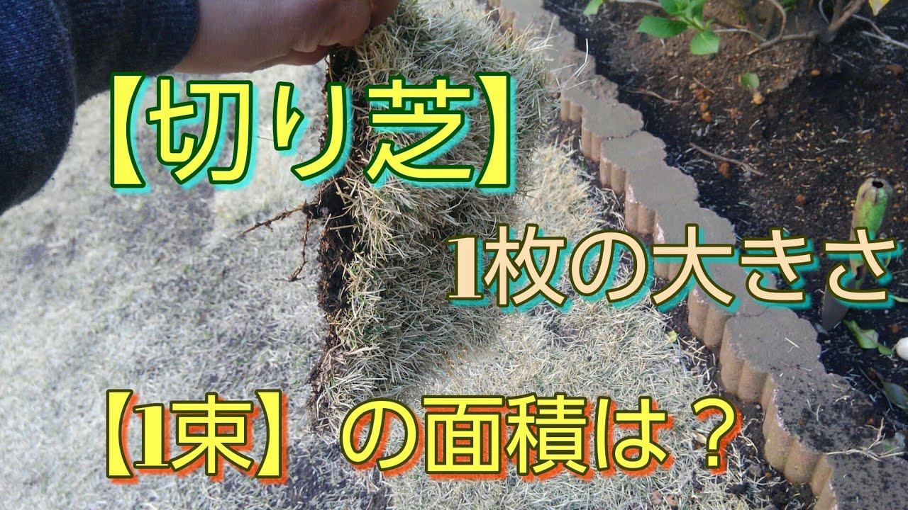 【芝生補修】1枚の大きさと、束の面積の基準から【自動計算】までします