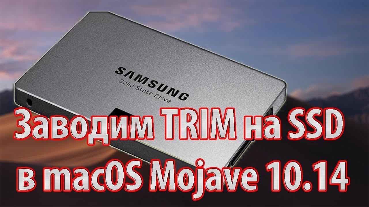 Заводим TRIM на SSD в macOS Mojave 10 14 – Hackintosh Clover