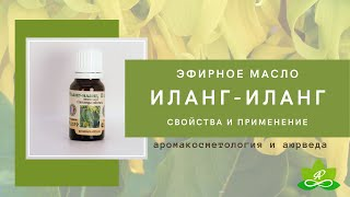Эфирное масло ИЛАНГ ИЛАНГа Свойства и применение масла