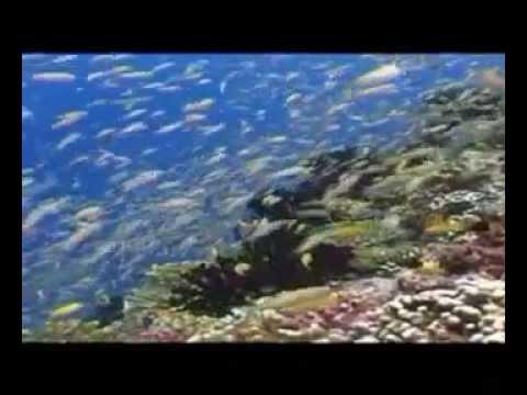 Seychelles / Sunway Travel Group