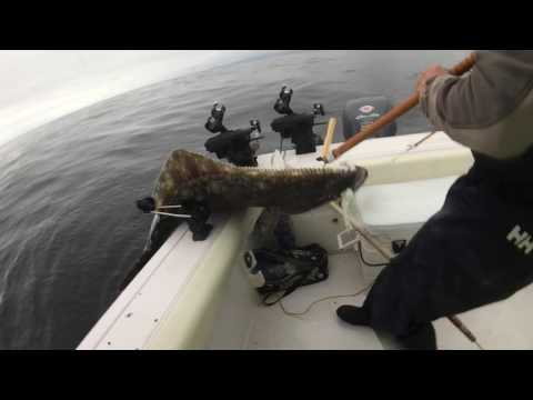 Port Renfrew Fishing