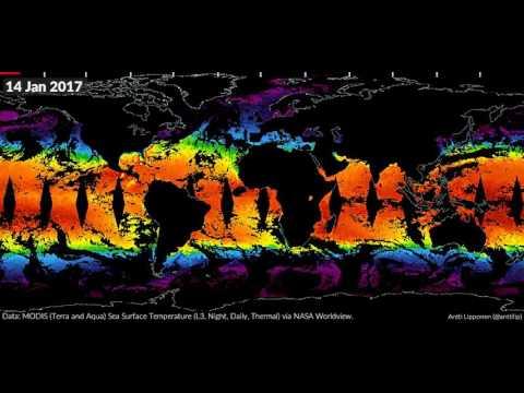 MODIS SST 2016-2017
