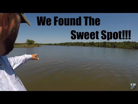Lake Fork Bass Fishing: Shell Bed Tips