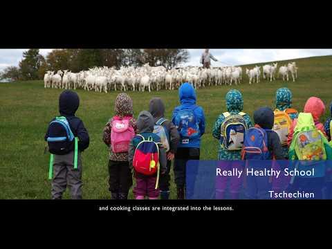 Skutečně Zdravá škola / Really Healthy School
