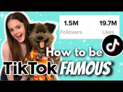 How to be TikTok Famous! With Hacker T Dog || Ellie Louise