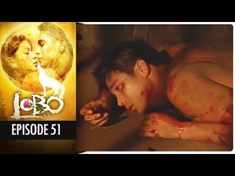 Lobo - Episode 51