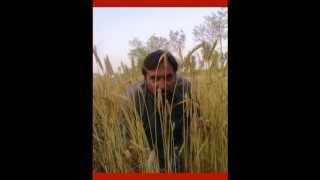 Chan Mere Makhna   Inayat Hussain Bhatti