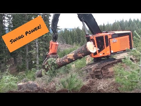 TimberPro TL765C cutting and handling large trees in Idaho