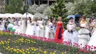 Бум невест в Красноярске
