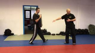 Defensive Front Kick with Amnon Darsa at Institute Krav Maga Netherlands