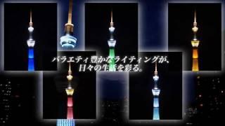 1/1000  東京スカイツリー(R)ジョイパレット thumbnail