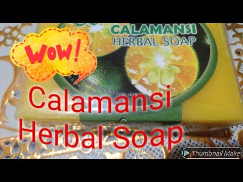Calamansi Soap Thesis