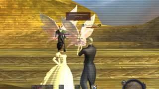 Aion World Wedding