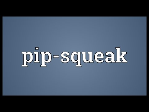 Header of pip-squeak