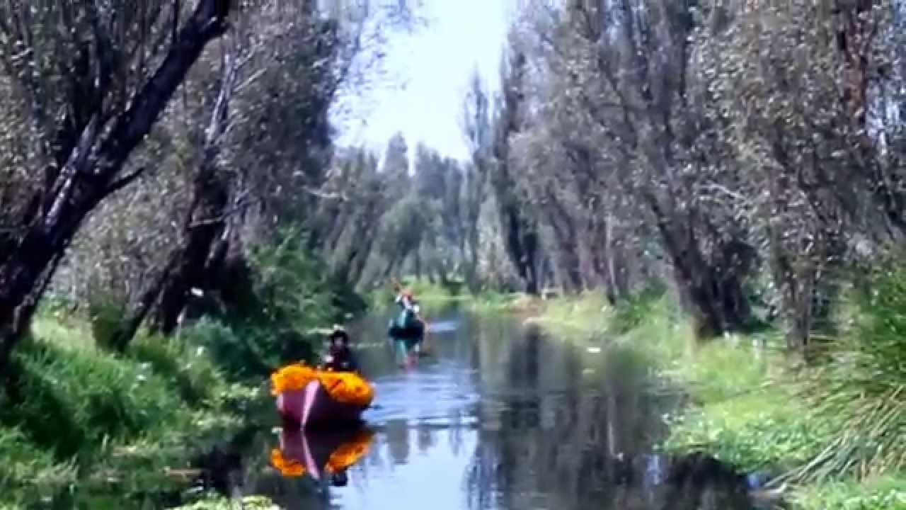 chinampas xochimilco - photo #3