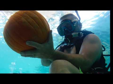 Underwater Pumpkin Carving | Underwater Pumpkin Carving 2016