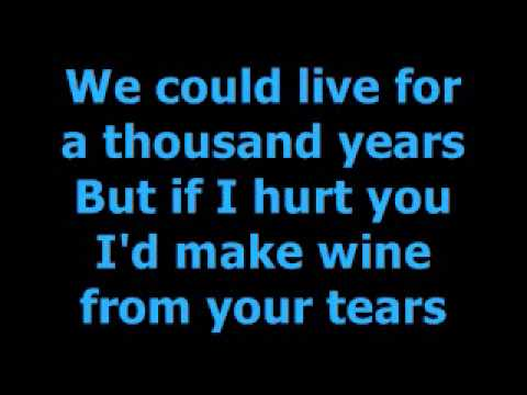 INXS Never Tear Us Apart Lyrics
