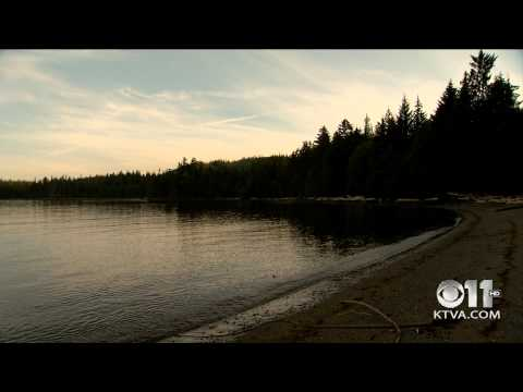 Tongass Timber: The Trade Offs: Part 1 for KTVA 11 News