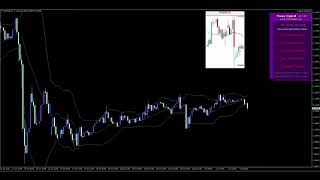 Beginners Scalpers Day Traders Swing Traders Verified Winning  Forex Trading Signals In Action