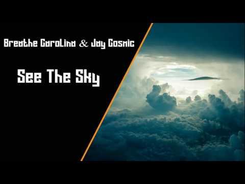Breathe Carolina & Jay Cosmic feat  Haliene - See The Sky