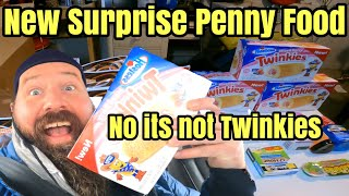 Dollar General Surprise Penny Shopping List Haul IT'S SO YUMMY