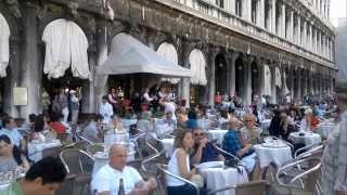 Песня про зайцев на площади Сан-Марко в Венеции / Russian song (Piazza San Marco in Venice)