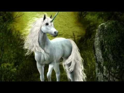 Единороги unicorns.