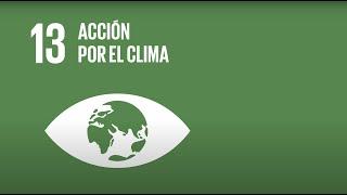 13 Acción por el clima - Agenda 2030-