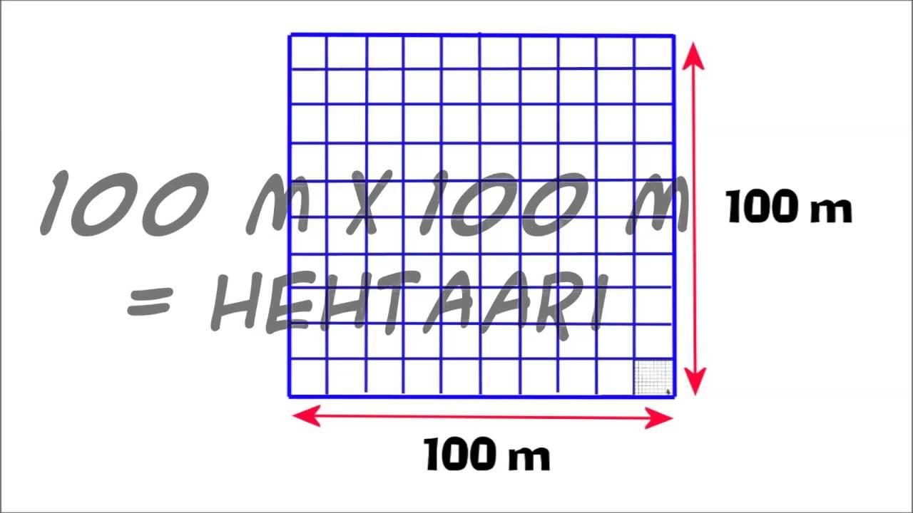 Hehtaari M2