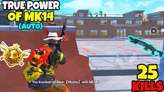 i Used The TRUE Power Of MK14 And This Happened in PUBG Mobile • (25 KILLS) • PUBGM (HINDI)