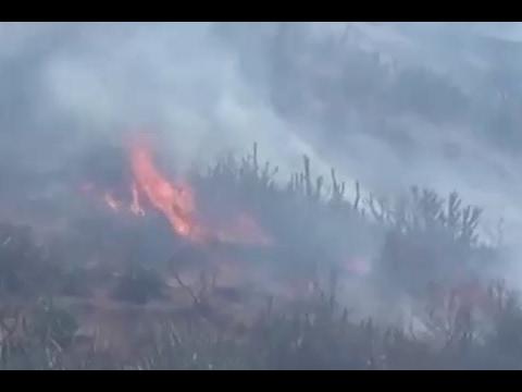 Fire In Mount Abu, Watch Video