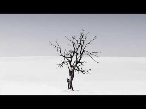 David Harness, Roland Clark - The Deejay's An Alien (FNX OMAR Remix)
