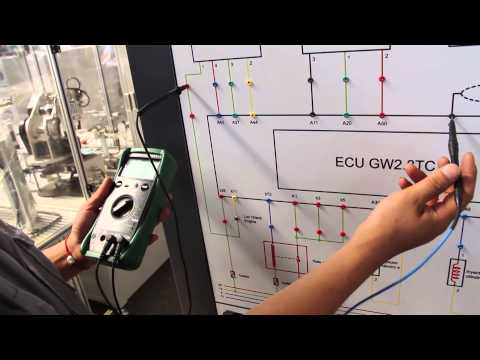 Automobile Electronical Controlled System Teaching Board-Dolang