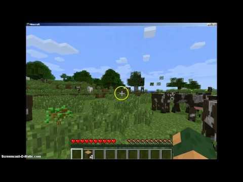 Minecraft : Land Of COWS!!