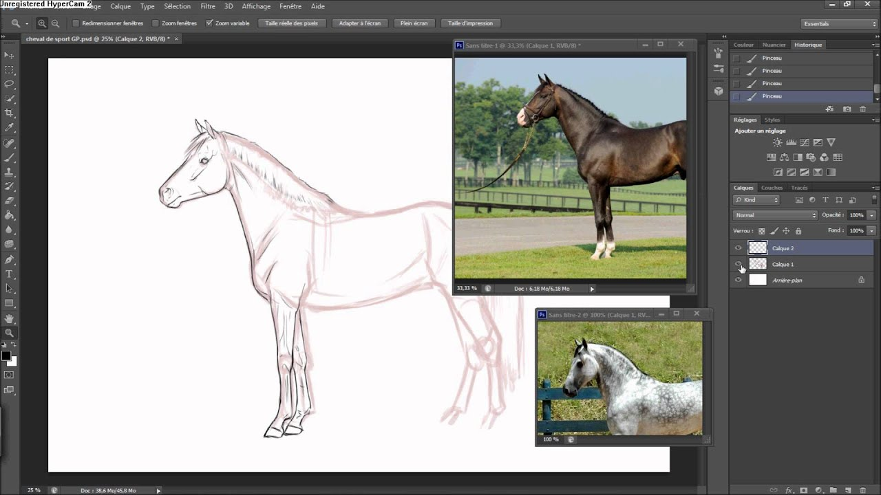 Drawing a realistic Horse Lineart