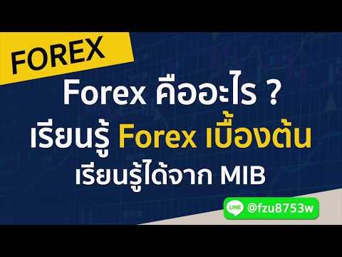 เรียนรู้ Forex เบื้องต้น สำหรับมือใหม่ที่ต้องการศึกษา Forex คืออะไร (มีคำตอบ)