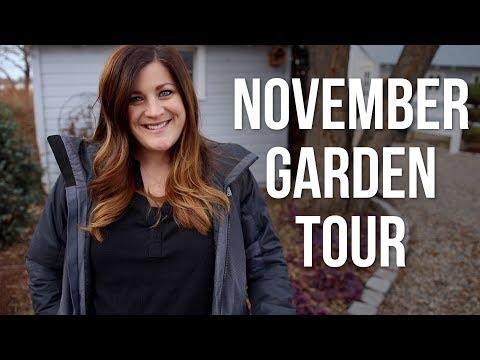November Garden Tour! 🍁🌲🍂 // Garden Answer