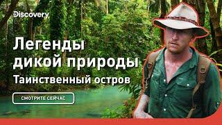Таинственный остров | Легенды дикой природы | Discovery