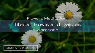 Flowers Meditation with Tibetan Bowls and Daisies Vibrations