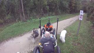 Dog Entertainment |  FurWheeling The Union Canal Trail, PA  | Dog Relaxation