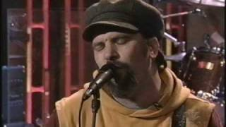Watch Steve Earle Everyones In Love With You video