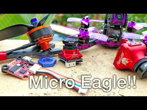 Micro Eagle, New Motor Mounts, Lizard 105S, New FC, Carbon Kevlar...