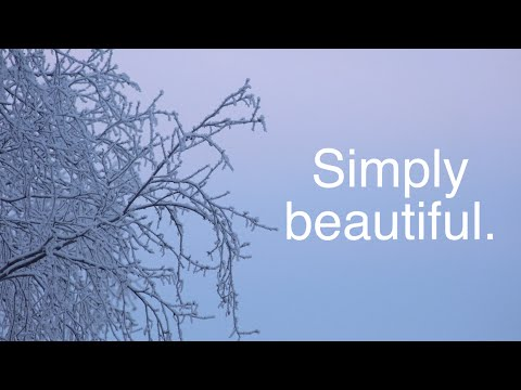 A BREAK FOR BEAUTY - 4K [Living In Alaska 249]