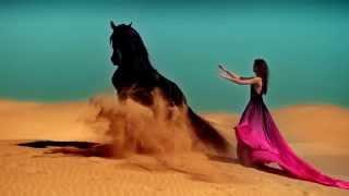 Видео красота завораживает!(Очень красивое видео. Видео красота завораживает! Супер красивое видео , природа лошади , люди . все смешалос..., 2013-09-03T17:38:29.000Z)