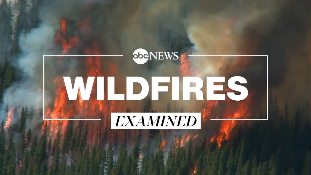 How Climate Change and Forest Management make wildfires harder to contain