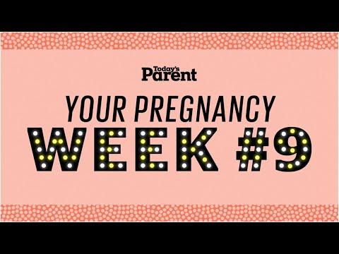 Your pregnancy: 9 weeks