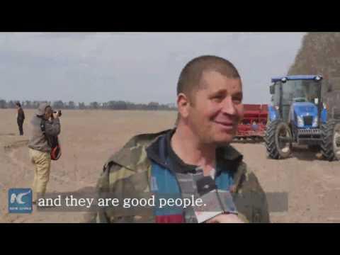 Chinese investors breathe new life to Ukraine's rural area