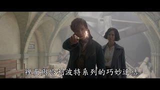 【怪獸與牠們的產地】FAN EVENT 開場影片